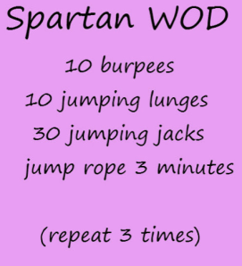 workout-spartanwod